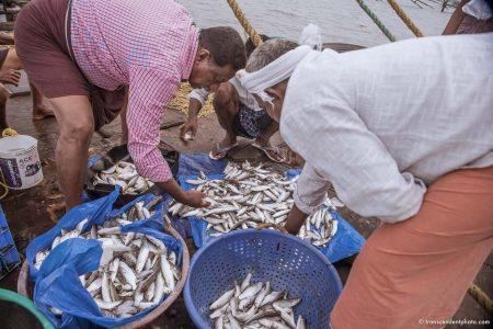 Miliardy kolorowych, drobnych okruchów - zdjęcie przedstawia pracujących przy połowie rybaków z Kerali