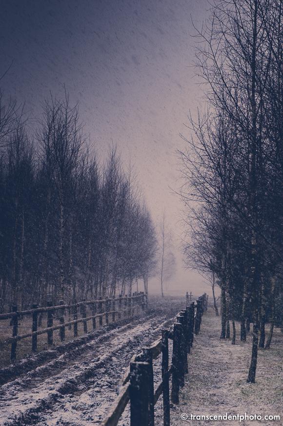 Spadł pierwszy śnieg...