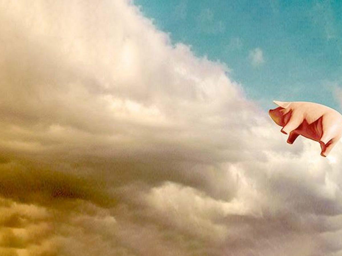 Wysoko na niebie szybujący balon w postaci różowej świni